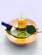 Aceite esencial de Eucalipto | Limpiador para baño y cocina ecológico. | Scoop.it