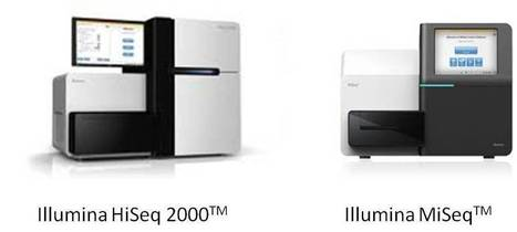 Best Illumina Whole Genome Sequencing Services at Effective Prices | mogene | Scoop.it