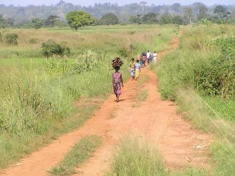 L'Afrique innove tous azimuts pour le développement durable | Afrique | Scoop.it