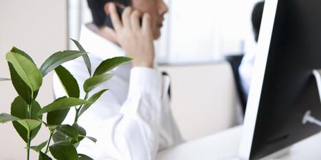 Une plante verte au bureau augmente votre productivité de 15% | Décoration et aménagement de bureaux | Scoop.it