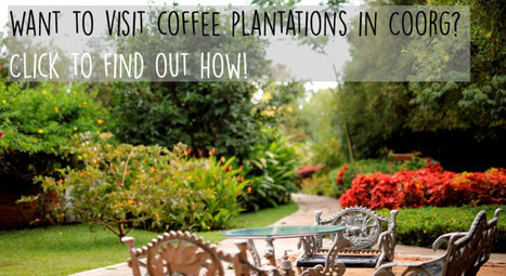 Want to visit Coorg coffee plantations in December 2016? Check and find out | Amanvana Spa Coorg Resort | Scoop.it