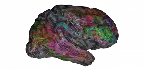 A brand new 'atlas' shows where different ideas live in our brains | Creatively Aging | Scoop.it