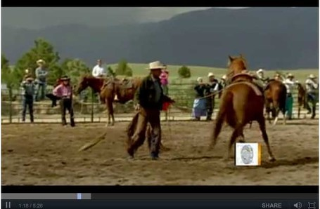 """Horse whisperer"" subject of award-winning film - CBS News Video 