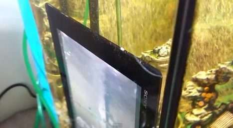 Underwater Fun!   Latest Technology   Scoop.it