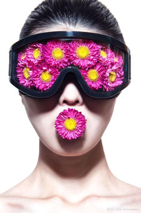 Flower head by Ajax Lee | My Photo | Scoop.it