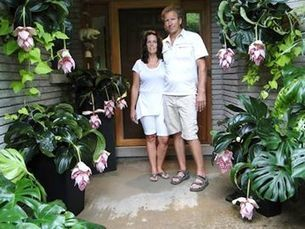 Exotic houseplant turns heads, opens new markets for Ontario flower grower | Canada Blooms Toronto | Scoop.it
