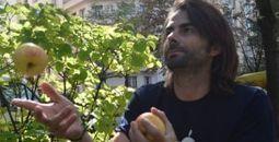 Lyon : des pommes pour soutenir les exploitants agricoles | Approvisionnement local cantine scolaire | Scoop.it