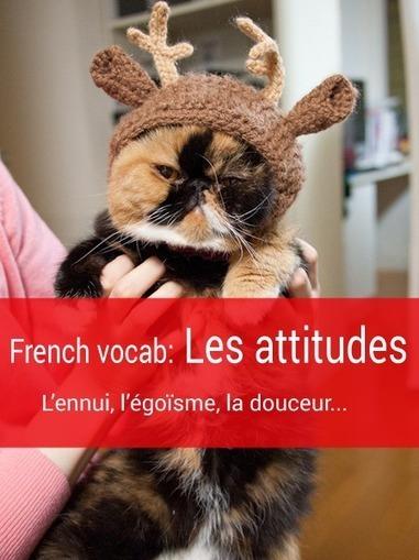 French vocab: Les attitudes (attitudes) - Talk in French | French learning - le Français dans tous ses états | Scoop.it