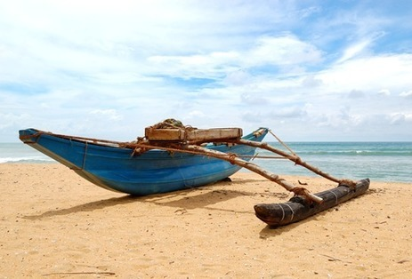 Holiday in Ooty and Kodaikanal for 5 Days & 4 Nights Package | Vacation in Kodaikanal, Honeymoon in Ooty | Riya Travels | Scoop.it