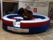 Rodeo Bull Hire UK Company Announces the Launch of Their New and User-Friendly Website | bouncy castles | Scoop.it