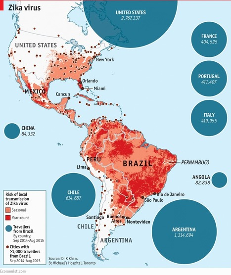 The spread of Zika virus | Geography & Current Events | Scoop.it
