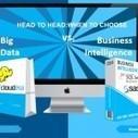 Big Data vs. Business Intelligence | Experts in Advanced Data Visualisations | data visualization | Scoop.it