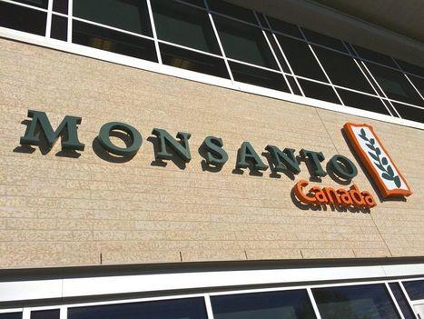 Bayer confirms US$62 billion cash offer for Monsanto | Grain du Coteau : News ( corn maize ethanol DDG soybean soymeal wheat livestock beef pigs canadian dollar) | Scoop.it