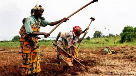 'Land is becoming a scarce commodity' | Africa | Africa and Beyond | Scoop.it