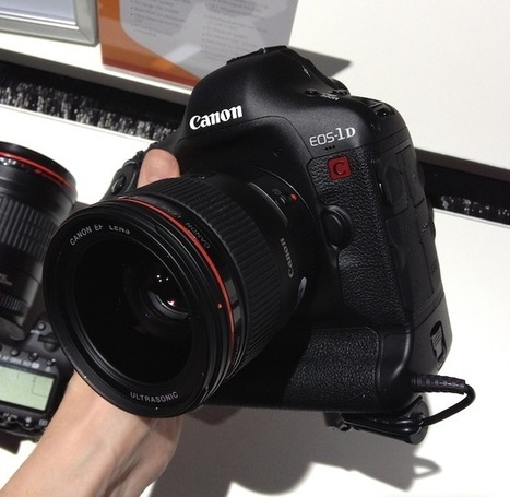 Exclusive – Canon confirm 1D C 4K DSLR is identical hardware to a 1D X | EOSHD.com | WorkingCinematographer | Scoop.it