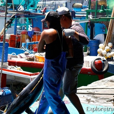 Travel Photo of the day - Fishing the East Coast of Taiwan... | ExploreTraveler.com | Scoop.it