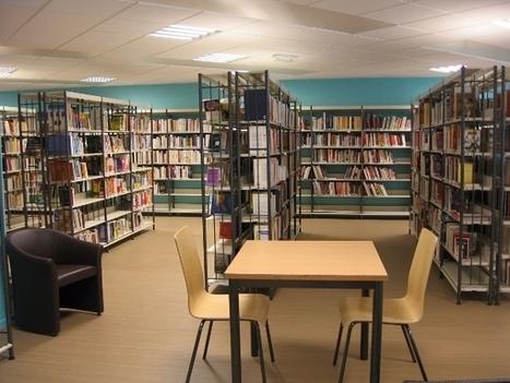 Bibliothèques : quels ont été les livres les plus empruntés en 2013 ? | La bibliothèque dans la cité | Scoop.it