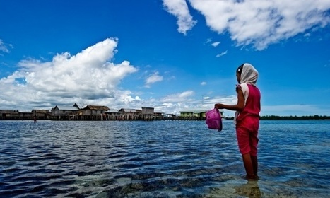 Coral Triangle key part of $24tn global ocean wealth | Sustainable Futures | Scoop.it
