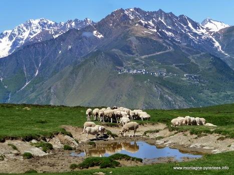 La Vallée d'Aure rayonne sur internet et les réseaux sociaux | Vallée d'Aure - Pyrénées | Scoop.it