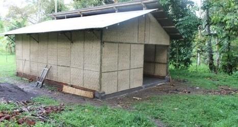 Indonesia:  Muslim Aid to Hold Mushroom Cultivation Training | Mushroom cultivation in The Third World | Scoop.it