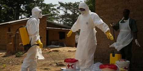 Has the Time Come to Test Experimental Ebola Vaccines? | Virology News | Scoop.it