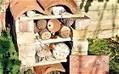 Children's gardening: multistorey insect hotel - Telegraph | 100 Acre Wood | Scoop.it