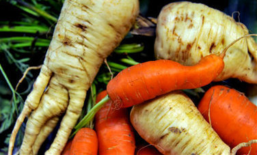 Ugly Fruits & Veggies: Why They Matter (Video) | Nutrition Today | Scoop.it