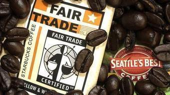 Fair trade coffee certification posts record in 2012 - Chicago Tribune | Fair Trade Coffee | Scoop.it