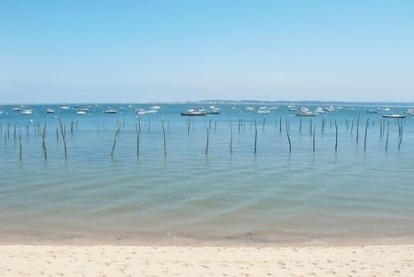 Bonnes adresses du Cap Ferret - Bassin d'Arcachon   Tourisme sur le Bassin d'Arcachon   Scoop.it