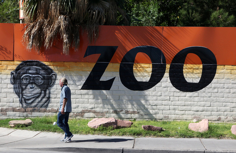 Officials moving animals out of Las Vegas zoo - Las Vegas Review-Journal | Wildlife | Scoop.it
