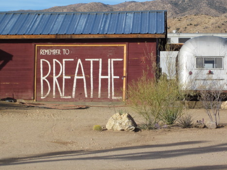 """""""With a deep and mindful breath…""""   7th Level Wellbeing   Scoop.it"""