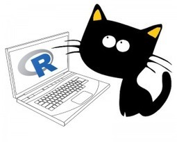 10 Top Tips For Becoming A Better Coder! | Things about R | Scoop.it