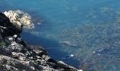 10 Good Reasons to go Coastal Walking - the benefits to walking coastal paths   Walking Holidays in France   Scoop.it
