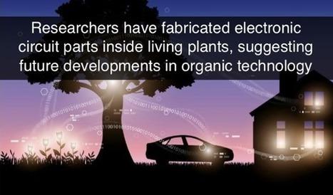 Electronic plants created   Post-Sapiens, les êtres technologiques   Scoop.it