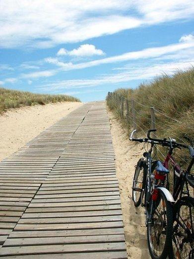Pourquoi Le Porge réduit l'accès à sa plage | Revue de presse Pays Médoc | Scoop.it