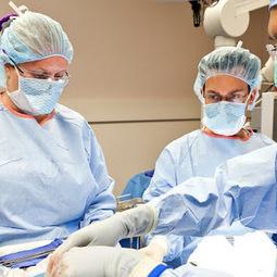 People Are Selling Their Organs on Facebook   Motherboard   living organ donor   Scoop.it