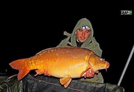Crapi de zapada la final de sezon | Carp fishing | Scoop.it