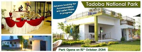 Tadoba Tiger King Resort | Tadoba Tiger King Resort | Scoop.it
