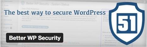 Créer ou améliorer votre site WordPress : 3 extensions essentielles et gratuites - | Design et ergonomie web | Scoop.it