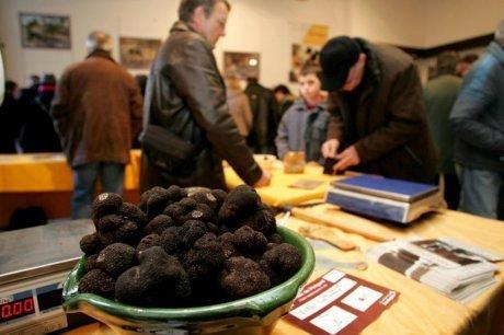 Dordogne : des truffes toute l'année | Agriculture en Dordogne | Scoop.it
