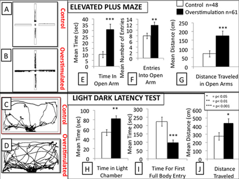 Overstimulation of newborn mice leads to behavioral differences and deficits in cognitive performance : Scientific Reports : Nature Publishing Group | Arimoura | Scoop.it