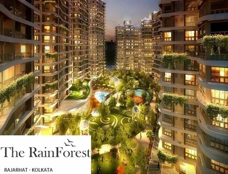 The Rain Forest | Real Estate | Scoop.it