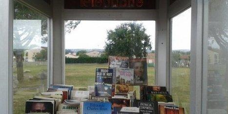 Le Tarn ouvre sa plus petite bibliothèque municipale... dans une cabine téléphonique - France 3 Midi-Pyrénées | Trucs de bibliothécaires | Scoop.it