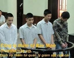Tội phạm trẻ vị thành niên đang gia tăng một cách chóng mặt   Công ty thám tử Bảo Minh uy tín - chuyên nghiệp - bảo mật   Scoop.it