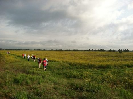 Katy Prairie Conservancy Earns National Recognition | The Katy News | Citizens' Environmental Coalition (Houston) | Scoop.it