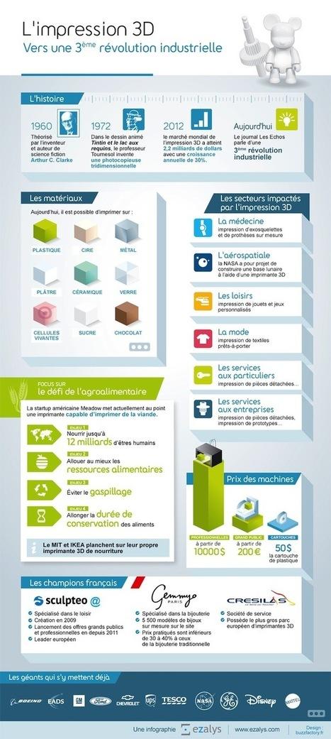 Infographie : est-ce que l'impression 3D est la 3ème révolution ... - Le blog des nouvelles technologies | Imprimante3D | Scoop.it
