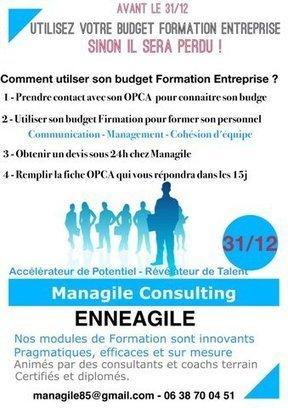 Utilisez votre budget formation avant le 31/12 avec Managile ! | Managile | Scoop.it