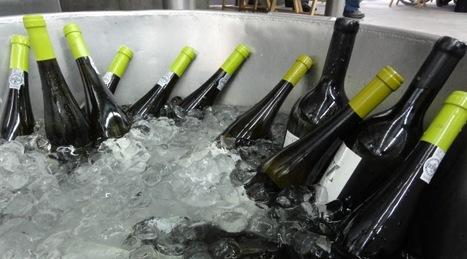 Wine temperature is f*****g important! | @zone41 Wine World | Scoop.it