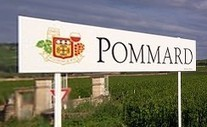 Pommard producers step up grand cru promotion push | Vitabella Wine Daily Gossip | Scoop.it