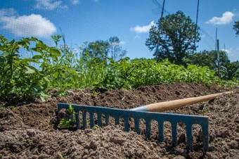New Documentary Covers the Environmental, Economic, Social, and Political Impacts of Soil | Permaculture, Homesteading & Green Technology | Scoop.it